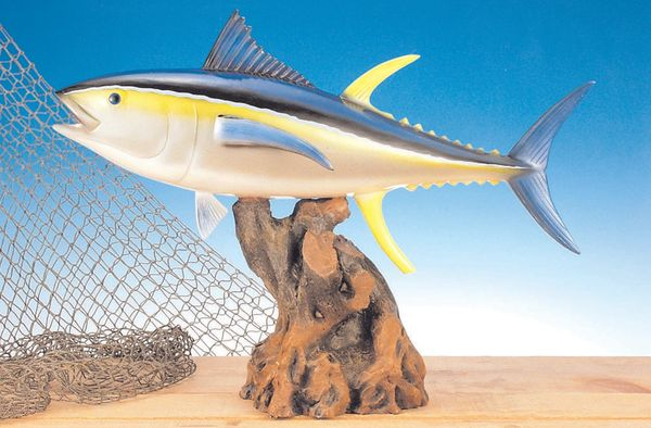TT103 Yellow Fin Tuna 12""