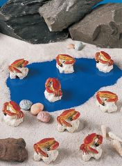 MCR100 Mini Crab (12 PC SET)