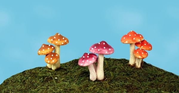 FA33 Mini Mushroom Picks (24 PCS SET)