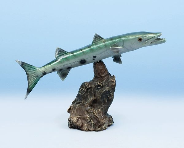 "TT116 Barracuda 13"" Statue"