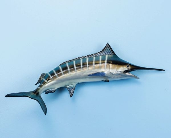 "TT401 Blue Marlin 22"" Fish Mount"
