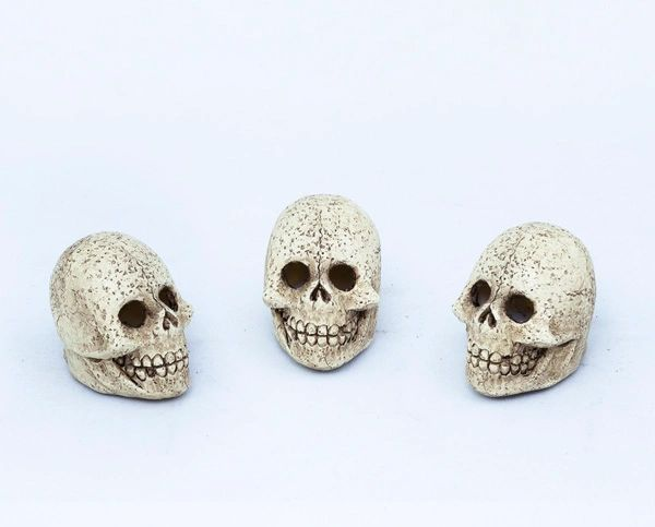 FA83 Light Up Skull with LED Light (12 PCS SET)