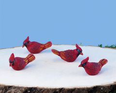 MCD100 Mini Red Cardinal (12 PCS SET)