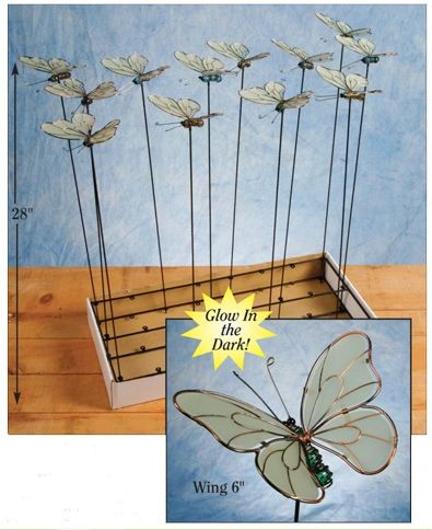 PS110 Butterflies with Free Display (24 PCS SET)