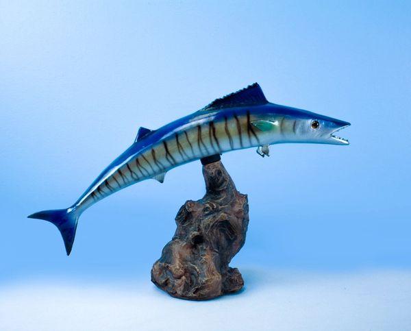 "TT621 Kingfish 16"" Statue"