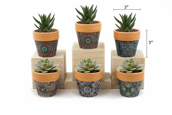 MP1 Mini Pots Set of 12 pcs