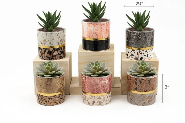 MP3 Mini Pots Set of 12 pcs