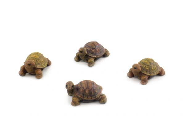FA133 Mini Box Turtles (12 PCS SET)