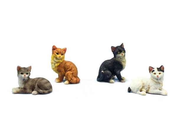 MCT100 Mini Short Hair Cat (12 PCS SET)