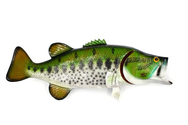 TT405 Large Mouth Bass Wall Plaque 20""