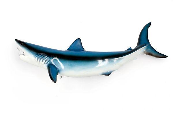 """TT414 Mako Shark 20"""""""