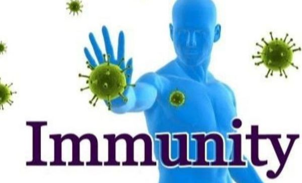 CBD Help boost your immune system