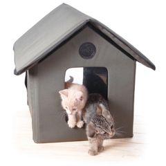 Outdoor Kitty House