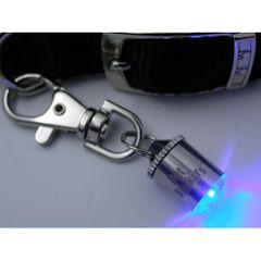 Pet Blinker Safety Light