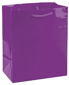 Solid Glossy New Purple Medium Bag