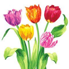 Spring Tulips Dinner Napkins, 16ct