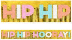 Giant Glitter Hip Hip Hooray Fringe Banner, 10ft