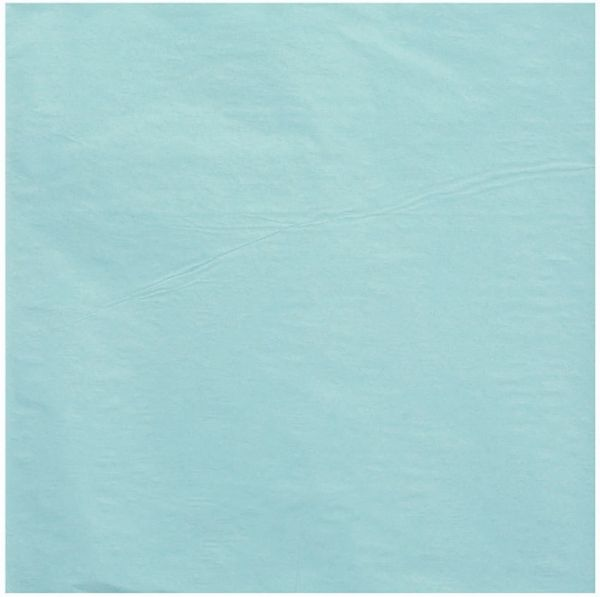 Robin's Egg Blue Tissue Paper Sheets, 20ct