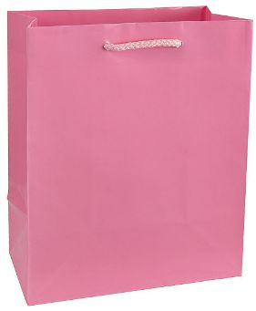 New Pink Glossy Gift Bag