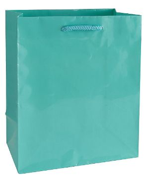 Robin's Egg Blue Glossy Gift Bag