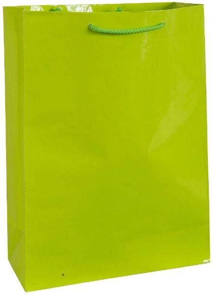 Kiwi Jumbo Glossy Bag