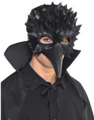 Crow Feather Mask