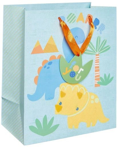 Dinosaur Baby Medium Bag w/ Gift Tag