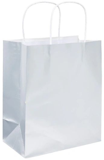 Medium Paper Bag - Silver Foil