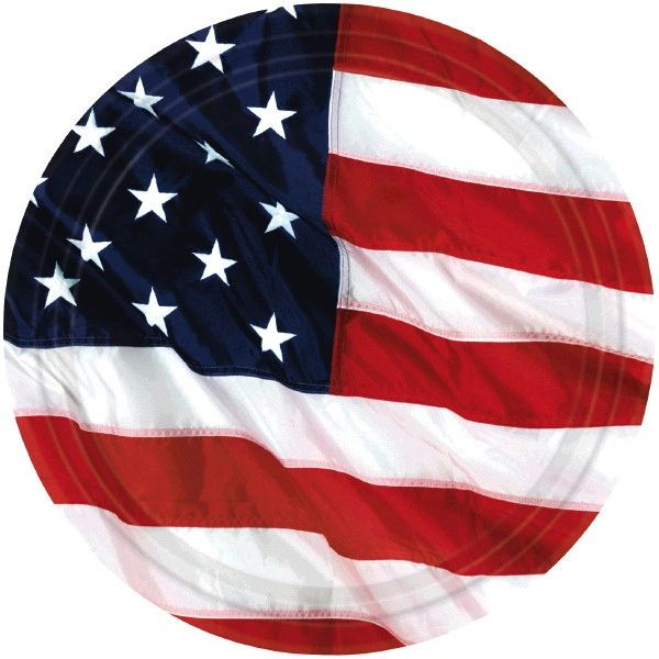 "Flying Colors American Flag Dinner Plates, 10 1/2"" - 8ct"