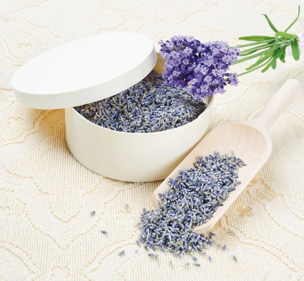 Lavender #1 Quality Food Grade