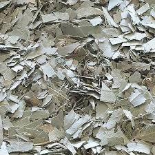 Eucalyptus Leaf Cut