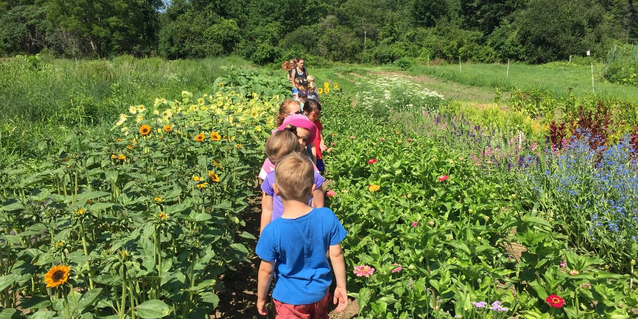Sign up for Holly Hill Summer Camp before all programs are full