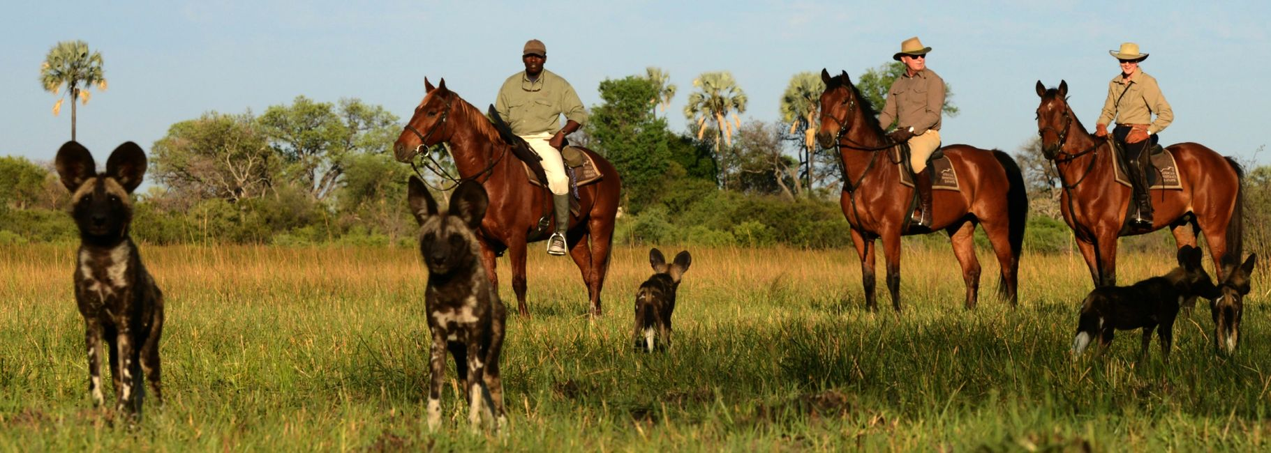 Horseback Safaris in the Okavango Delta, Botswana, Africa