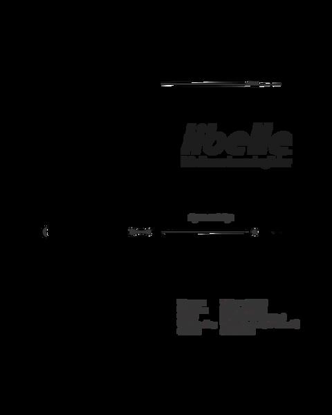 Dream-Flight Libelle DLG Kit