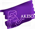 Akeso Consulting, LLC