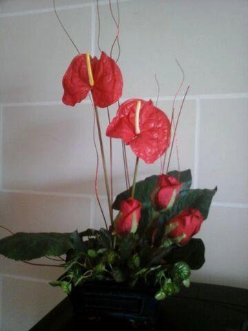 ANTHURIUM AND ROSES
