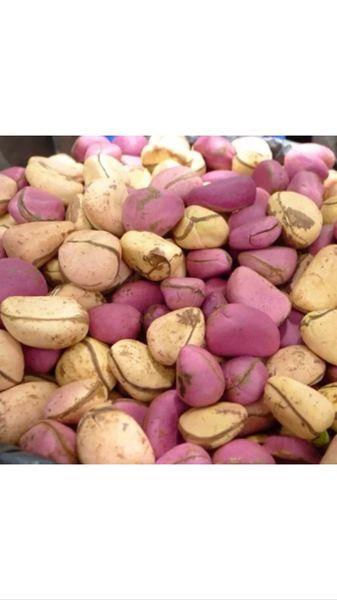 African Kolanut/ Colanut/ Cola Nut 1/2 Pound