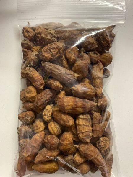 Fresh Tiger Nut from Ghana