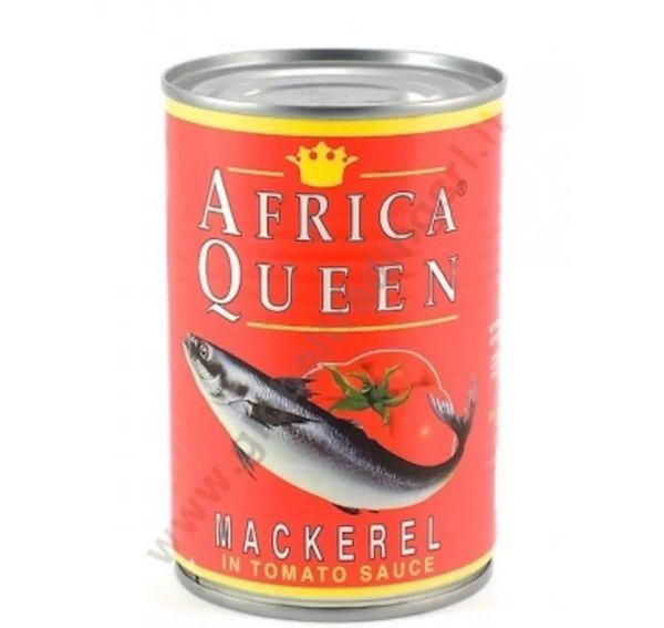 African Queen Mackerel