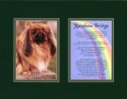 Pet - Rainbow Bridge - Matted Print with Photo Holder