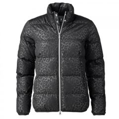 Daily Sports Heat Padded Jacket - 963/421