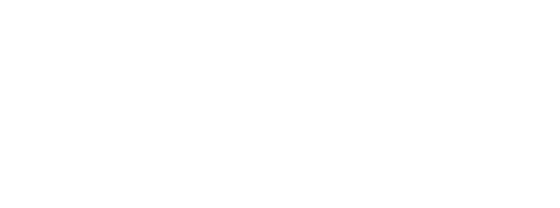 Dawns Dance Connection