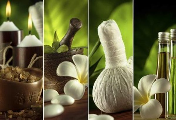 Ayurvedic Massge & Bodywork, Pinda Swedana and Basti Therapeutic Oil Massage