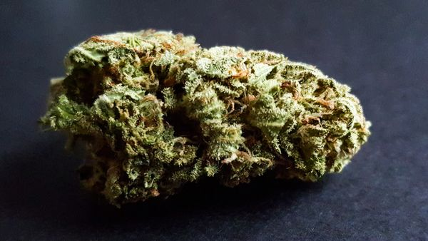 Hubba Bubba Kush *AVAILABLE