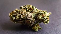 Sky Walker OG Kush *AVAILABLE