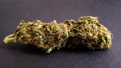 Girl Scout Cookies *AVAILABLE