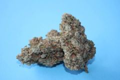 Chemdawg * AVAILABLE