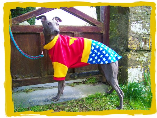 Superhero / Character Dog Fleece Jumper or 4 Legged PJs