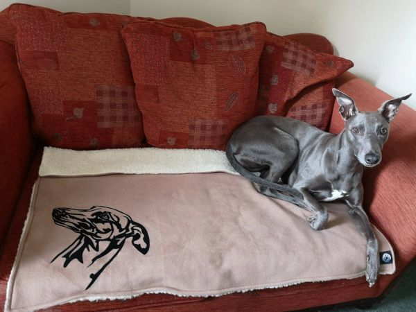 Whippet / Greyhound Head Fleece / Sherpa and Faux Fur backed Blankets