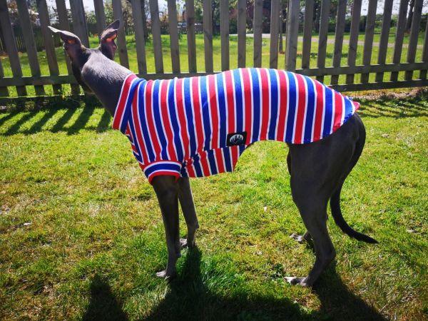 Dog T Shirt / Cotton Onesie Medical Surgical Coat